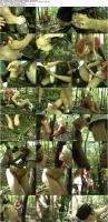 http://t3.pixhost.to/show/1839/10970946_dominant-dolls-faster-stupid-huntsman-kill-kill_s.jpg