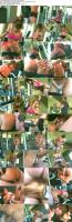 https://t3.pixhost.to/show/4369/20245265_bodybuildersinheat_13_devon_michaels_s.jpg