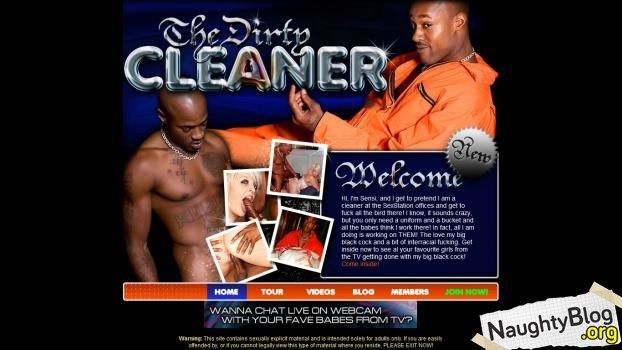TheDirtyCleaner.com - SITERIP
